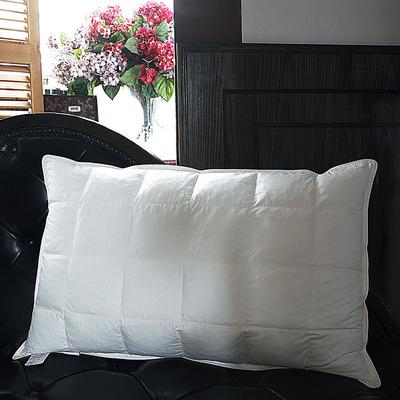 FWY粒子枕